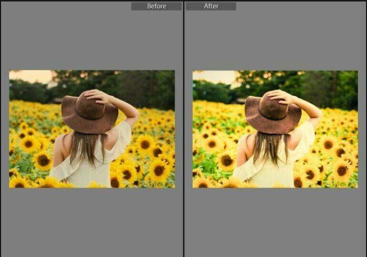 Sunflare Lightroom Presets | Free Download Lightroom Preset